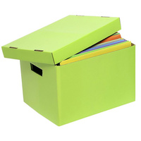 Marbig Archive Box Solid Lime