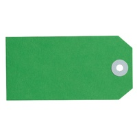 Avery Shipping Tags Size 4 108x54mm Green