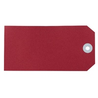 Avery Shipping Tags Size 6 134x67mm Red