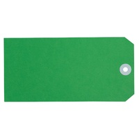 Avery Shipping Tags Size 8 160x80mm Green