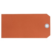 Avery Shipping Tags Size 8 160x80mm Orange