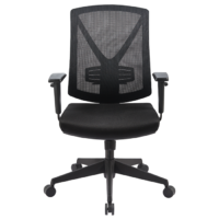 Brio II Mesh Chair With Arms