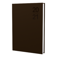Debden Silhouette Diary A4 Week to View Copper 2021 Edition