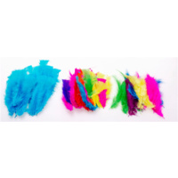 Jasart Feathers Small Assorted Colours 51pk